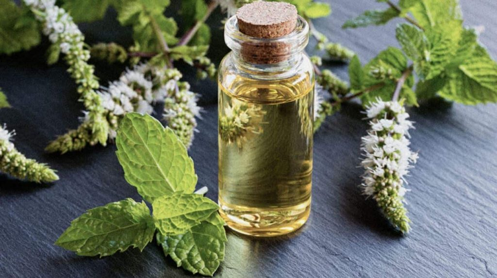 How Can I Treat Allergies Naturally Through Essential Oils?