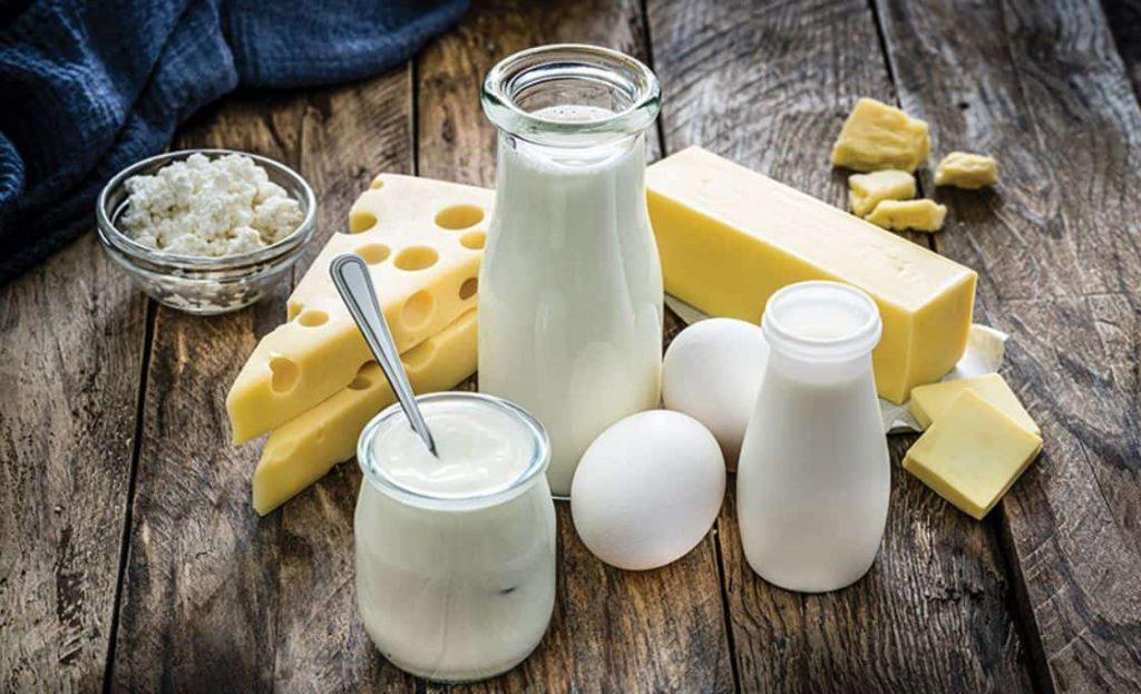 Choline Source Dairy