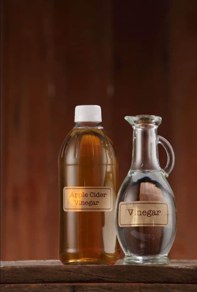 Difference Between Apple Cider Vinegar And White Vinegar